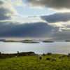 Dorinish Island in Clew Bay